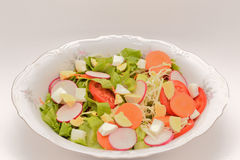 Vegetable салат Стоковая Фотография
