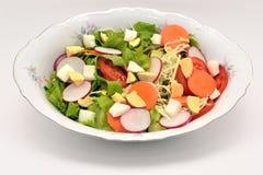 Vegetable салат Стоковое Изображение