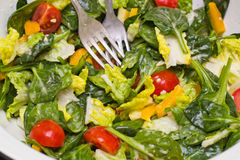 Vegetable салат стоковые фото
