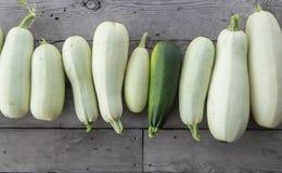 Vegetable сердцевины в саде Стоковые Фото