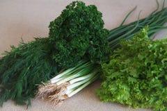 Vegetable смешивание v Стоковое Изображение