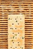 Vegetable солёные шутихи стоковые фото