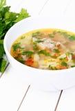 Vegetable суп с мясом Стоковое фото RF