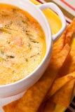Vegetable суп Стоковое Изображение RF
