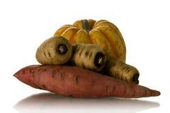 Vegetable Stock Photos