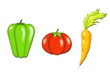 Vegetable stock illustration