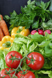 Vegetable. Salad, Tomato and other fresh vegetable Stock Photo