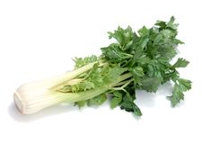 Vegetable. Green Vegetable Royalty Free Stock Photos