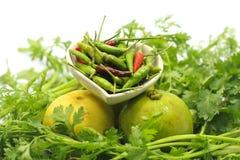 Vegetable. Chili and lemons on parsley Royalty Free Stock Image