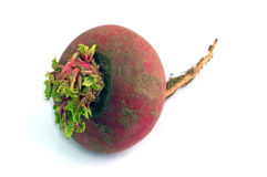 Vegetable. Turnip Royalty Free Stock Photos
