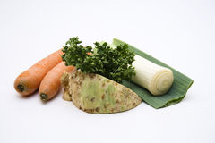 Vegetable. Fresh vegetable for the soup royalty free stock photo