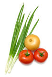 Vegetable. On a white background royalty free stock photography