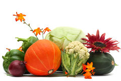 Vegetable And Autumn Flower Royalty Free Stock Photo