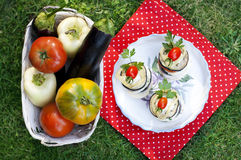 Vegetable appetizer. Top view of the vegetable snack of aubergine, zucchini and tomatoes on a background of green grass and ripe vegetables in the basket Stock Photo
