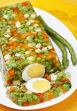 Vegetable aspic. Delicious vegetable aspic with eggs Royalty Free Stock Photos