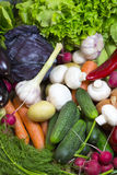 Vegetable background Royalty Free Stock Image