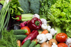 Vegetable background Stock Photos