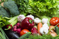Vegetable background Royalty Free Stock Photos