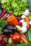Vegetable background Royalty Free Stock Image