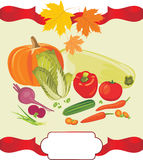 Vegetable background to the thanksgiving day Royalty Free Stock Image