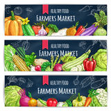Vegetable banner with veggies sketch on blackboard Royalty Free Stock Photography