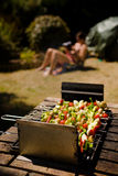 Vegetable Barbecue Shish-kebab sunbathing girl. Various colorful and healthy vegetables grill in a barbecue. Shish-kebabs made with mushrooms,peppers,cherry royalty free stock photos