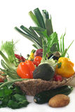 Vegetable basket Royalty Free Stock Photos