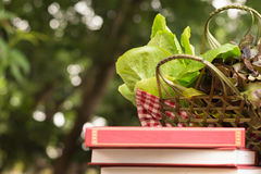Vegetable basket. Close up vegetable in a basket under the books Royalty Free Stock Image