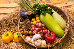 Vegetable in the basket Stock Image