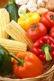 Vegetable basket with fresh vegetables Stock Image