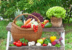 Vegetable in the basket on the stairs Stock Images