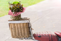 Vegetable basket. Vegetables in the basket on the brown box motorcyc seat Royalty Free Stock Images