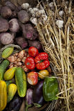 Vegetable in a basket Stock Image