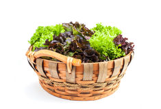 Vegetable in basket Royalty Free Stock Images
