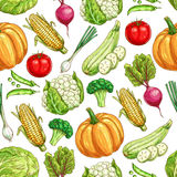 Vegetable and bean seamless pattern background Royalty Free Stock Images