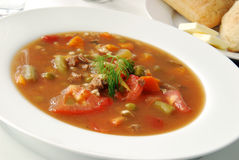 Vegetable Beef Soup with Dill Garnish Stock Image