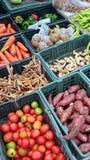 Vegetable in box Stock Photos