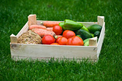 Vegetable in box on grass Stock Photography