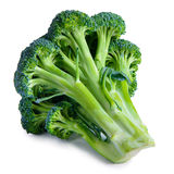 Vegetable broccoli isolated Stock Photos