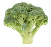 Vegetable broccoli on a white background. Stock Images