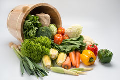 Vegetable with bucket Royalty Free Stock Image