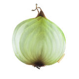 Vegetable bulb onions in a cutaway Royalty Free Stock Photo