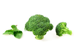 Vegetable cabbage broccoli Stock Images