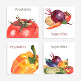 Vegetable Card Set Stock Image