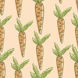 Vegetable carrot seamles hand drawn colorful. Pastel pattern Royalty Free Stock Photos