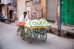 Vegetable cart, Jodhpur, India Stock Image
