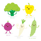 Vegetable Cartoon Cute Set Sweet Pepper Broccoli Shallot Radish Bitter Gourd Vector Stock Photography