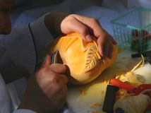 Vegetable Carving. Culinary chef Demonstrating the art of Vegetable carving Stock Images