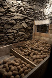 Vegetable cellar Stock Image