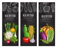 Vegetable chalkboard banner of fresh veggies Royalty Free Stock Photos
